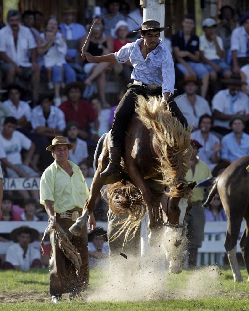 966 794x990 Укрощение необъезженных лошадей: 20 удивительных кадров