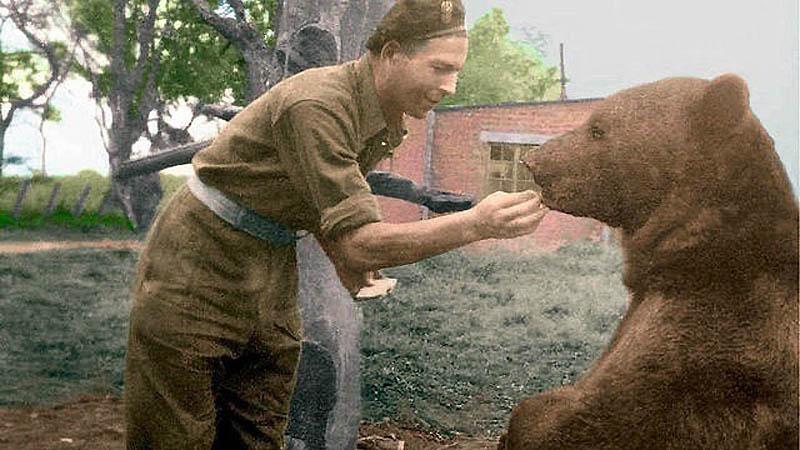 968 Необычные солдаты Второй мировой: Войтек