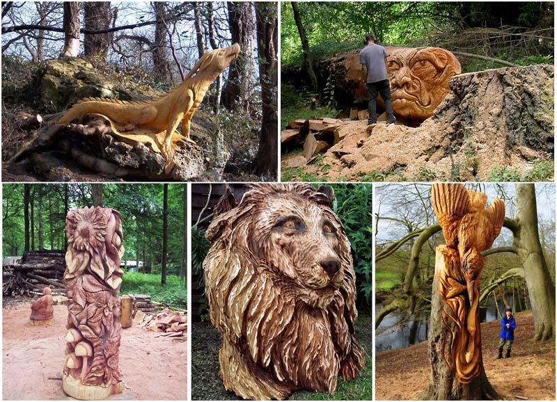 BIGPIC86 Вторая жизнь срубленных деревьев