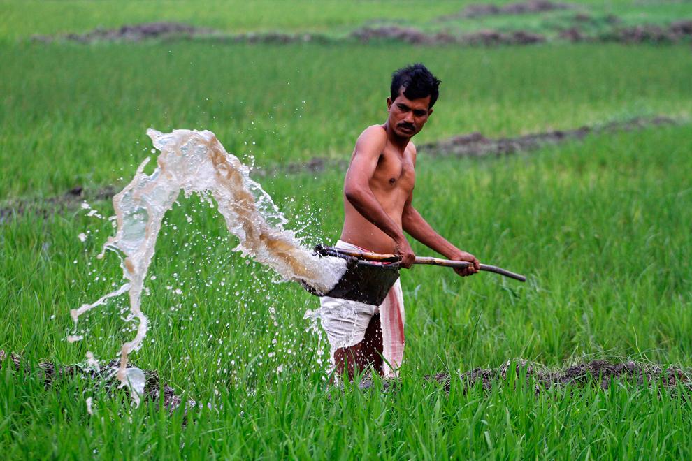 bp214 Всемирный день воды 2012