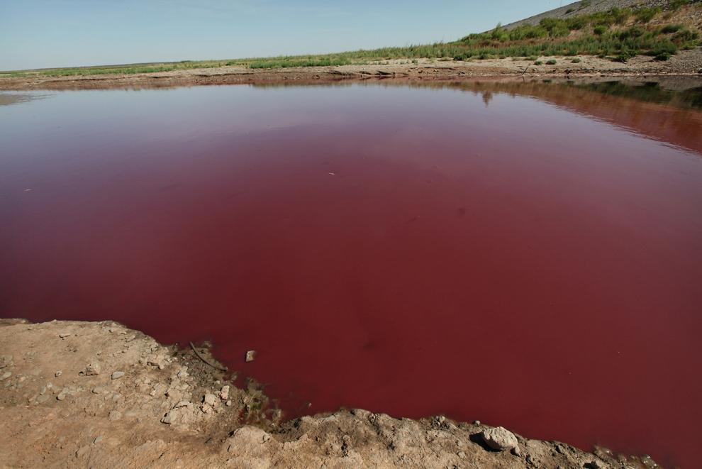 bp313 Всемирный день воды 2012