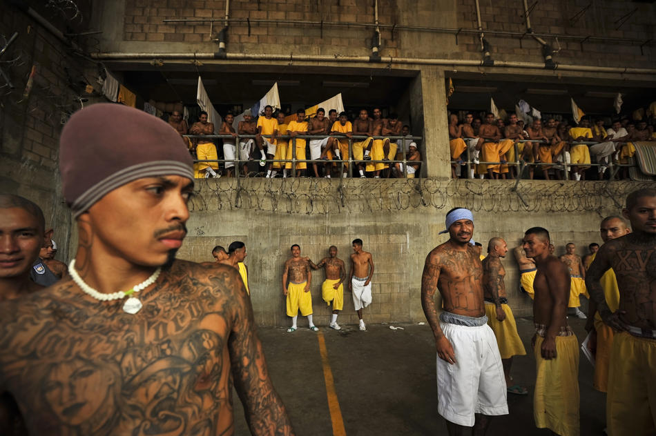 gangs in the prisons Governance and prison gangs november 2011 in correctional facilities and on the street most mexi-can mafia members previously participated in a street.