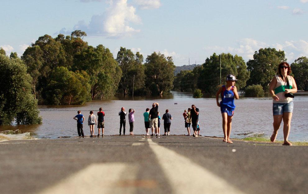 s w04 RTR2YWMK Пауки спасаются от наводнения в Австралии