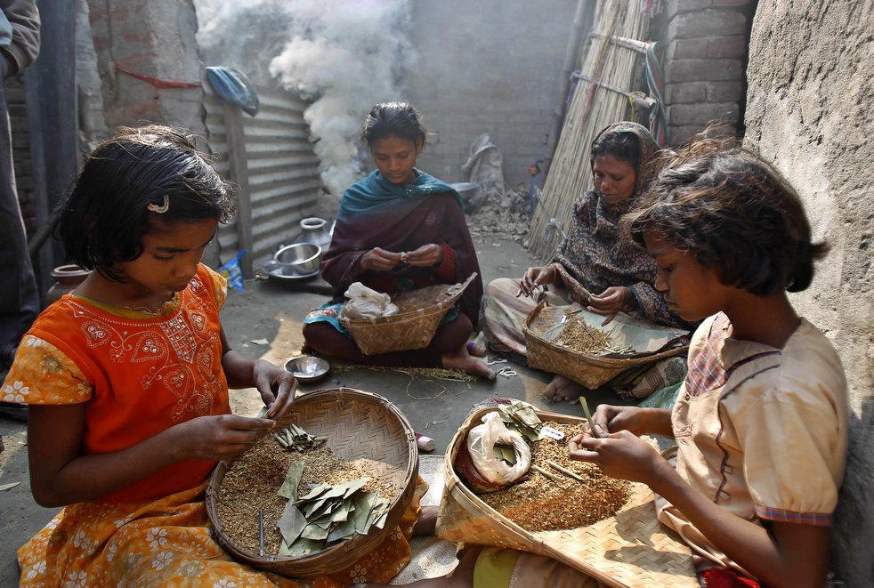 tobacco roller 01 Индийская девочка в табачном плену