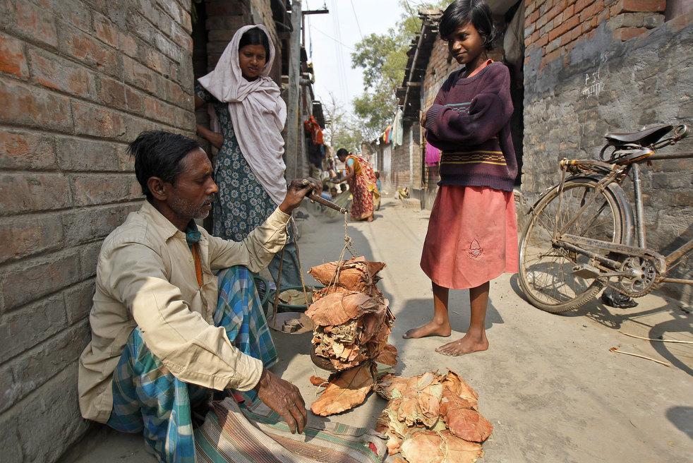 tobacco roller 02 Индийская девочка в табачном плену
