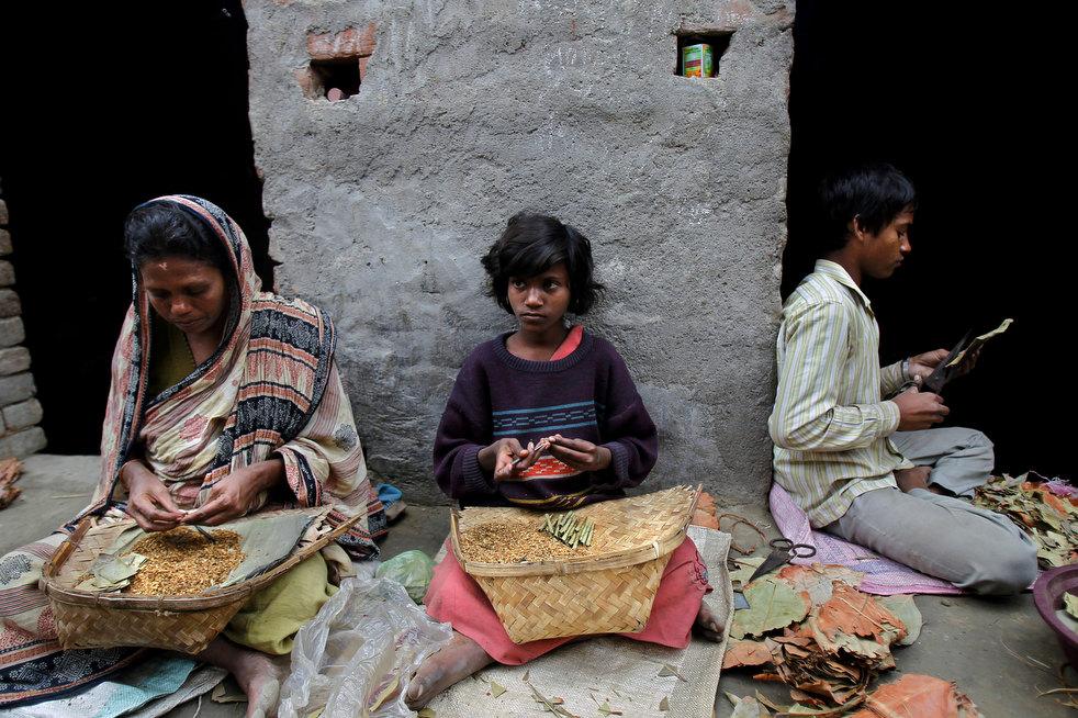 tobacco roller 05 Индийская девочка в табачном плену