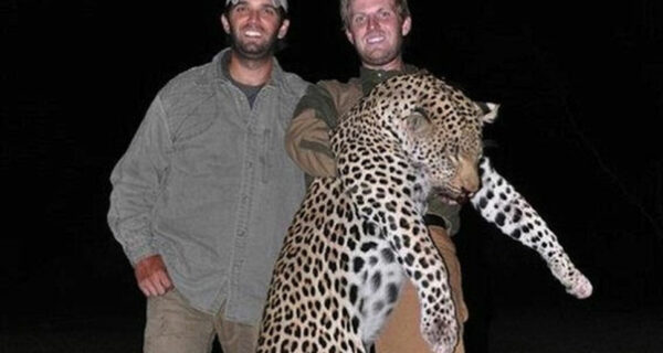 Сыновья Дональда Трампа любят убивать животных