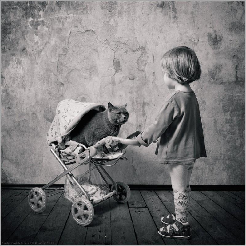 Дочки матери 800x800 Маленькая девочка и кот Том