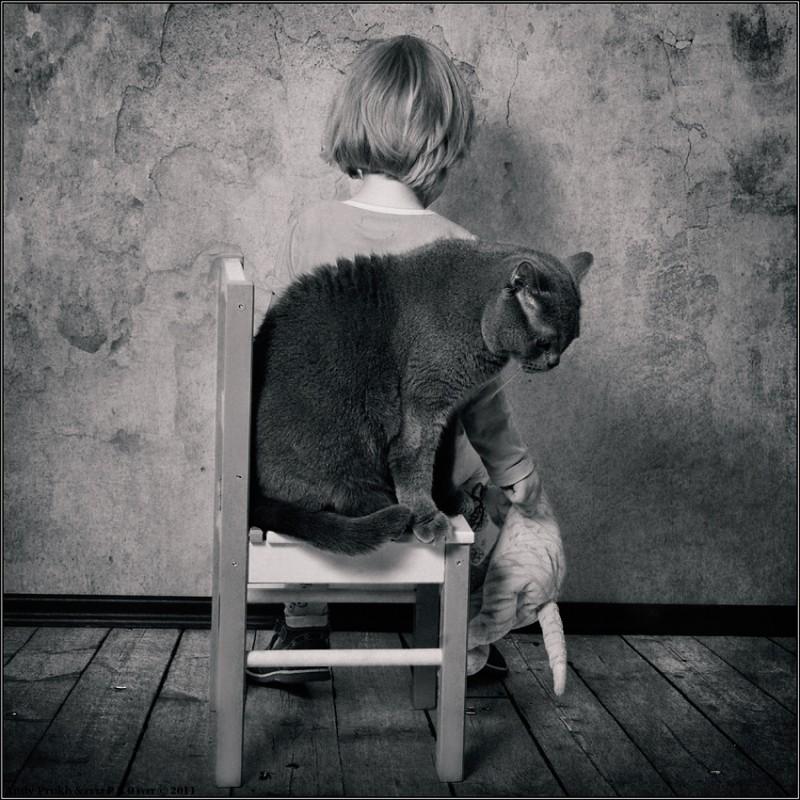 Непонимание 800x800 Маленькая девочка и кот Том