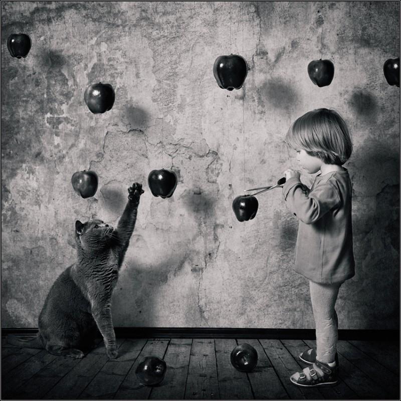 Новые яблоки Ньютона 800x800 Маленькая девочка и кот Том