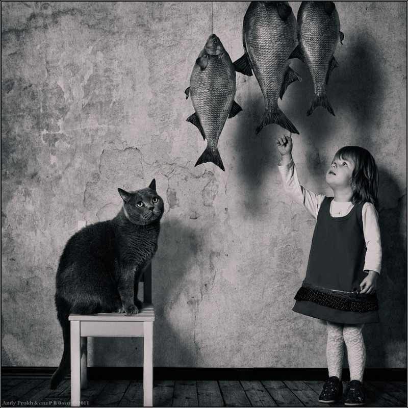 Рыбка 800x800 Маленькая девочка и кот Том