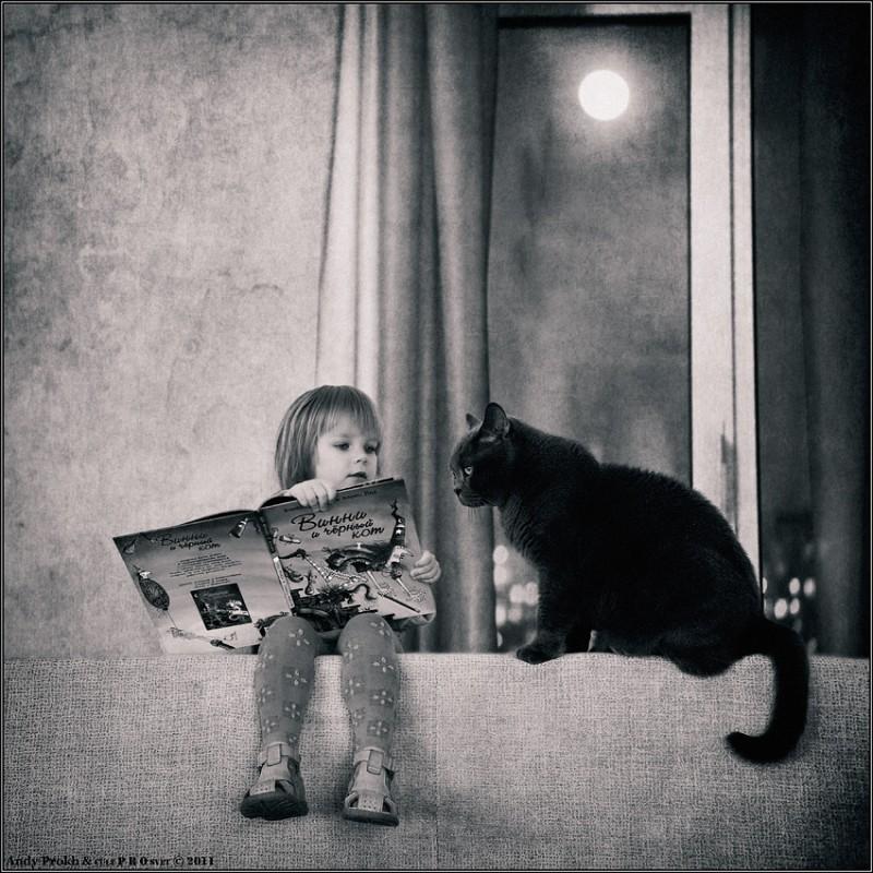 винни и черный кот 800x800 Маленькая девочка и кот Том