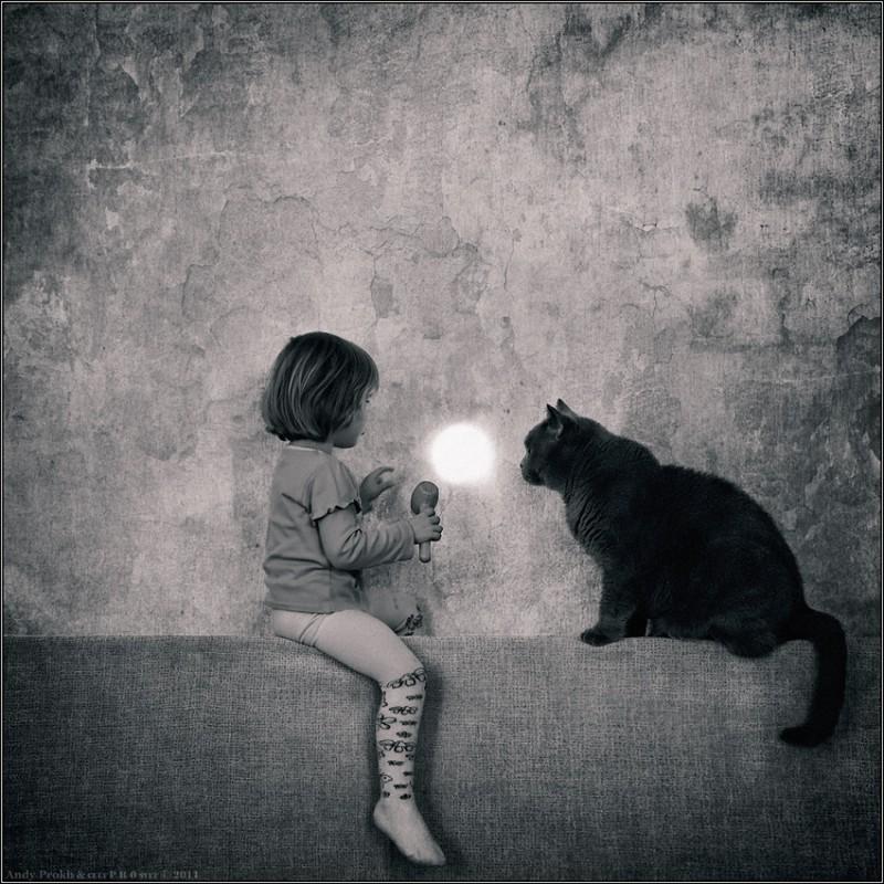 как поймать солнечный зайчик 800x800 Маленькая девочка и кот Том