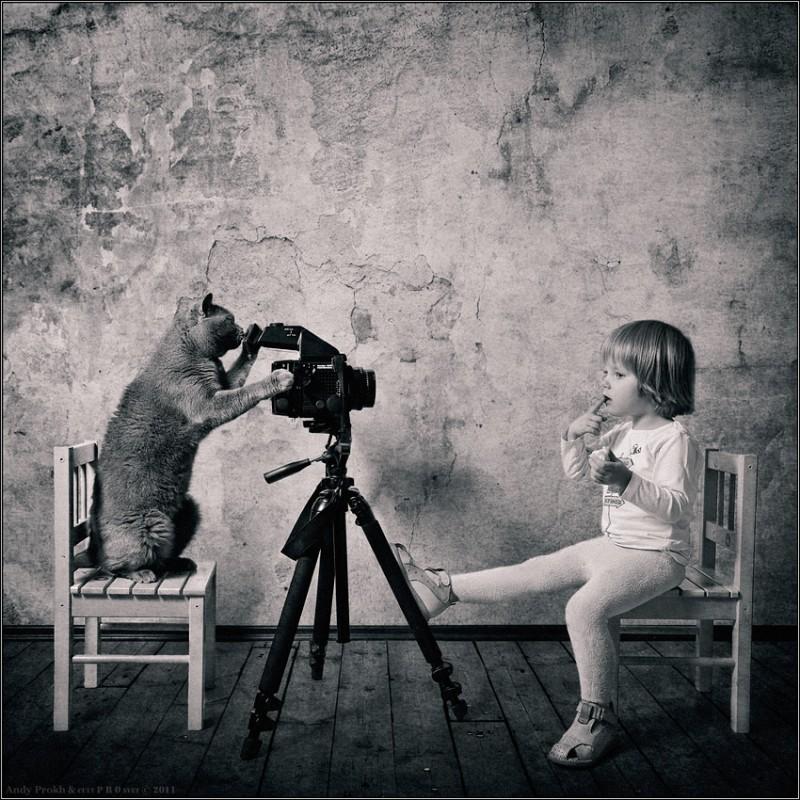 как сделать шедевр 800x800 Маленькая девочка и кот Том