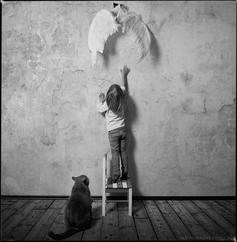 крылья 784x800 Маленькая девочка и кот Том