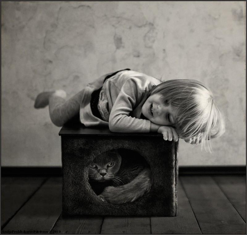 мечтатели 800x762 Маленькая девочка и кот Том