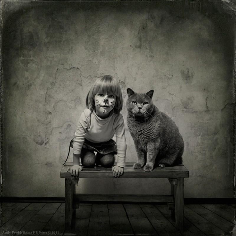 мы кошки 800x800 Маленькая девочка и кот Том