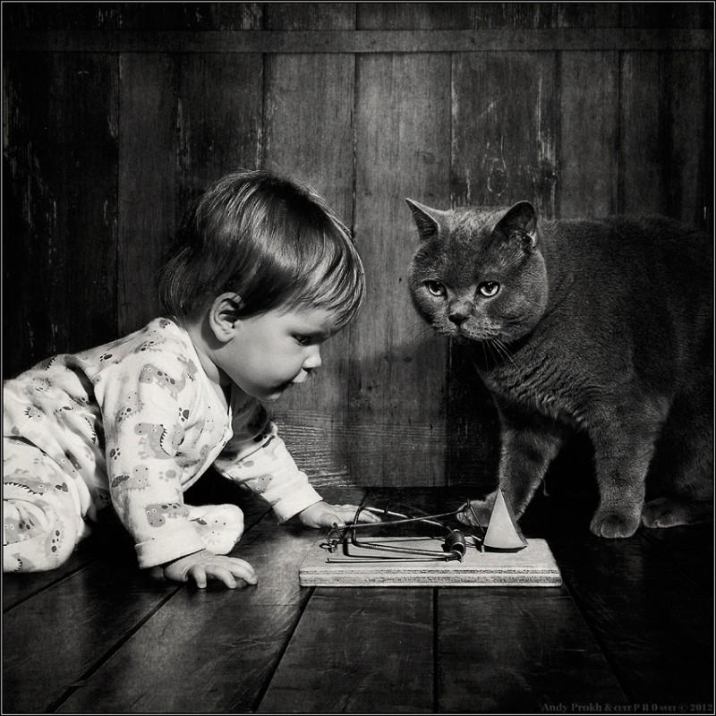 охотники на мышей 800x800 Маленькая девочка и кот Том
