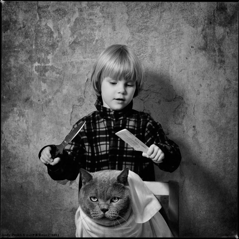 парикмахер первый опыт 800x800 Маленькая девочка и кот Том