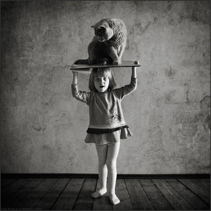 принц персии 800x800 Маленькая девочка и кот Том