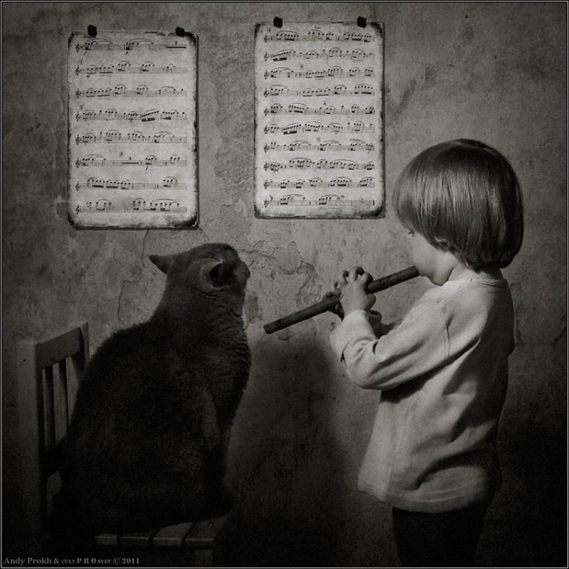 уроки музыки 800x800 Маленькая девочка и кот Том