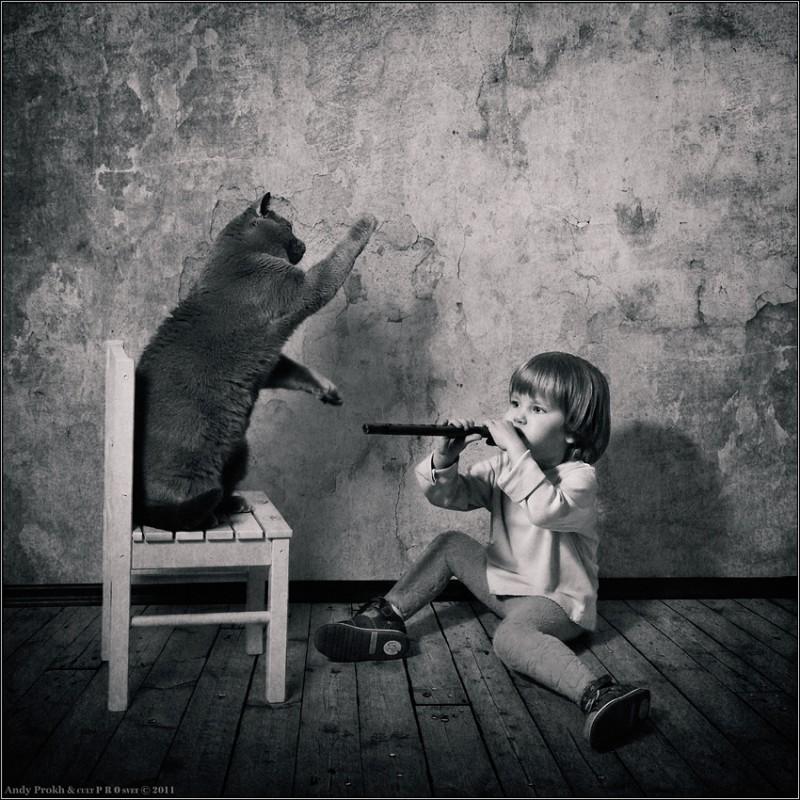 уроки музыки2 800x800 Маленькая девочка и кот Том