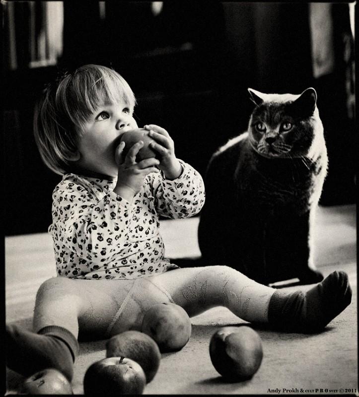 яблоки и персики 723x800 Маленькая девочка и кот Том