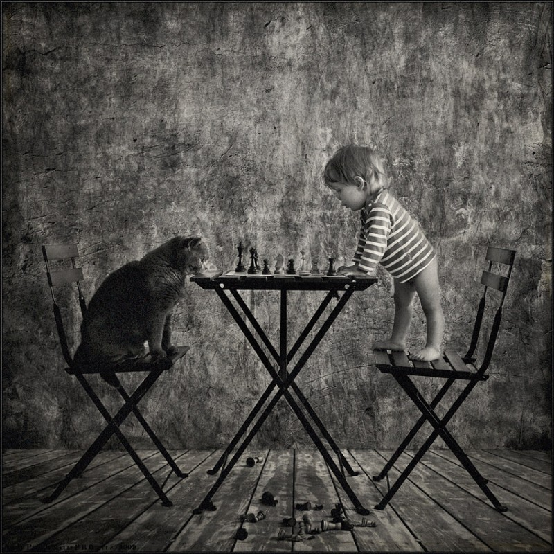 0017 800x800 Маленькая девочка и кот Том
