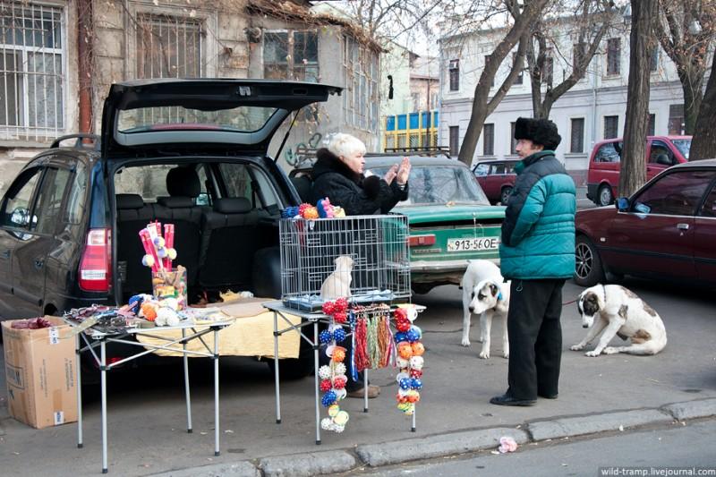 0283 800x533 Одесская барахолка