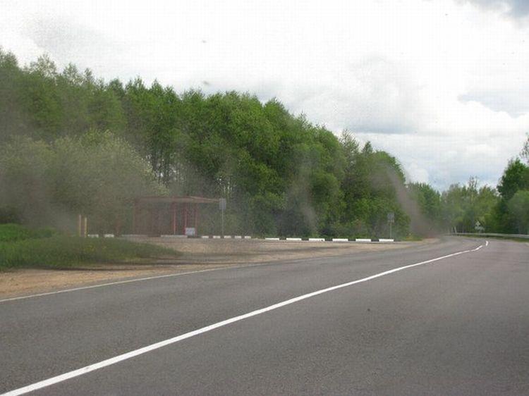 0 8762a  Нашествие комаров на деревню в Беларуси