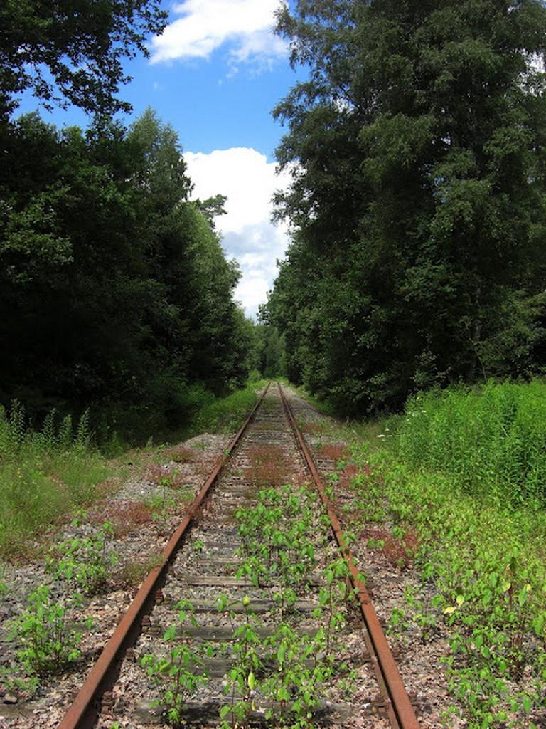 11181 Заброшенные железные дороги