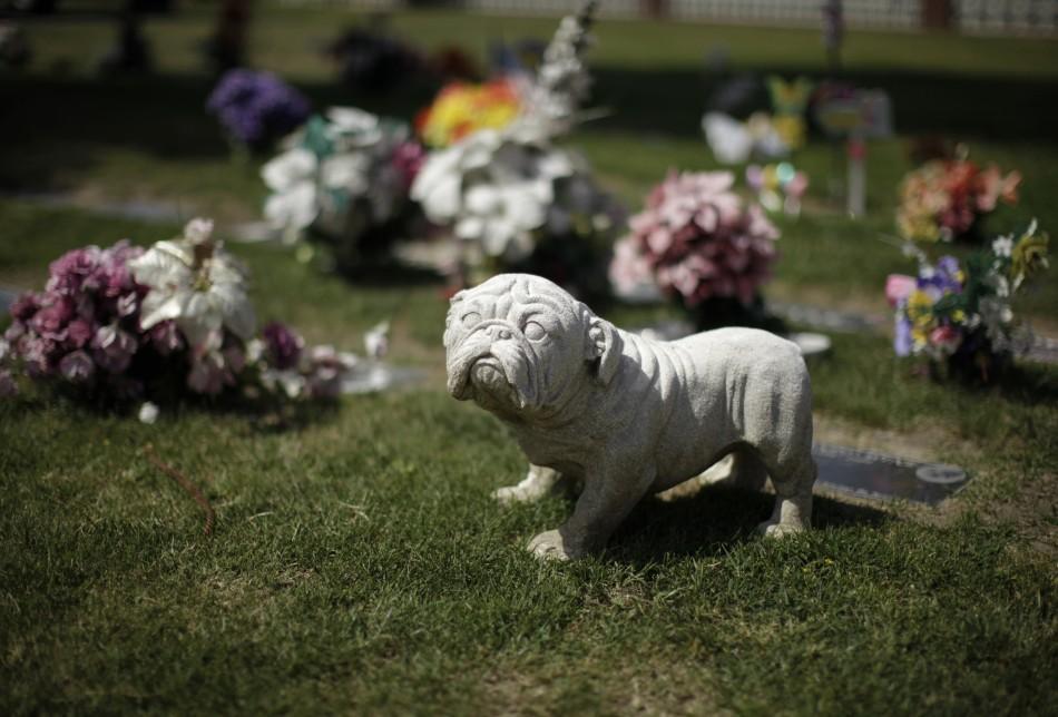 1201 Кладбища домашних животных в США