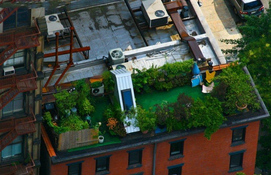 1208 Сады на крышах (Часть 2)