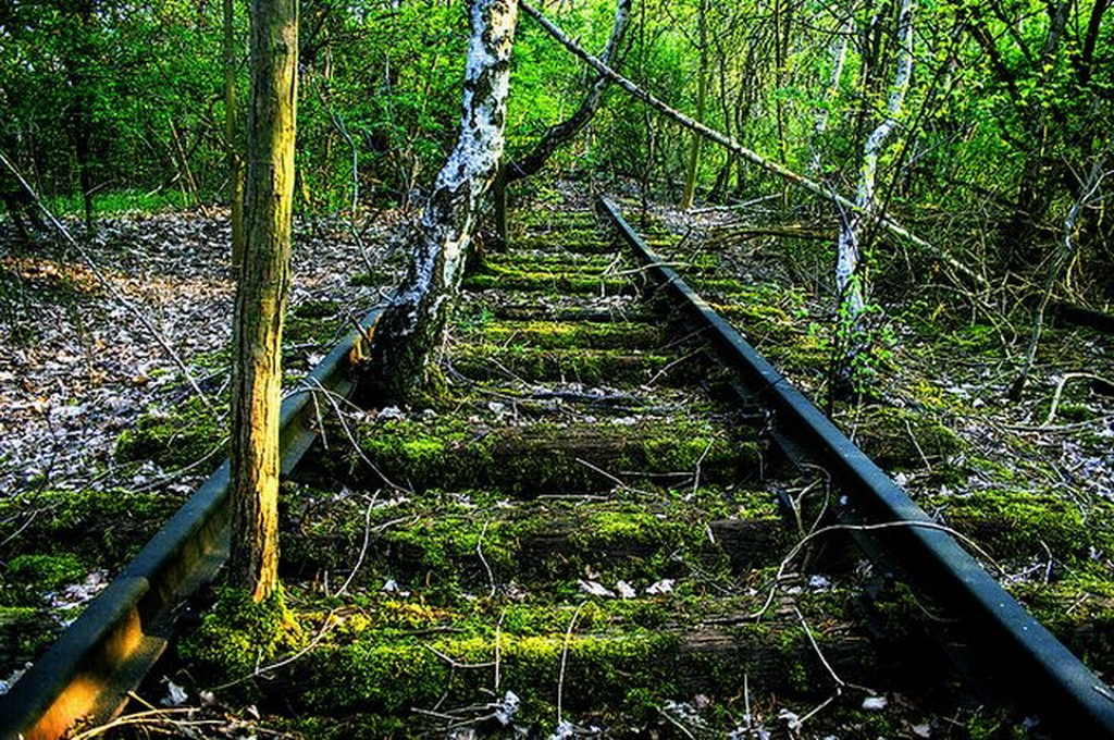 12153 Заброшенные железные дороги