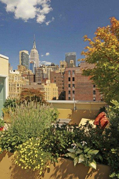 1265 Сады на крышах (Часть 2)