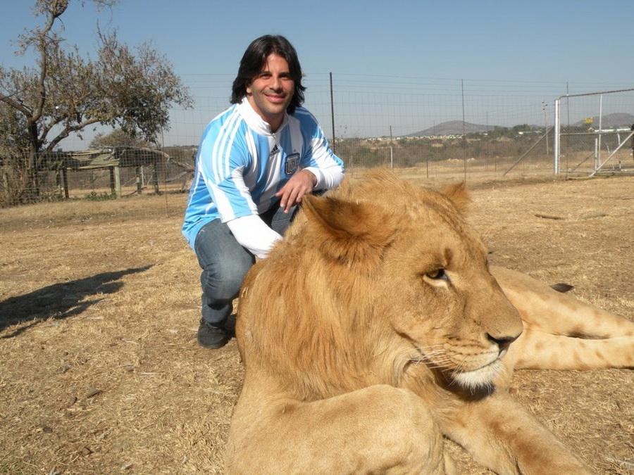 13126 Прогулка со львами