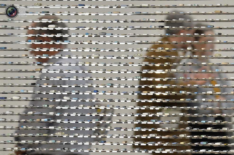 1333 Творчество Дэмьена Хёрста в фотографиях
