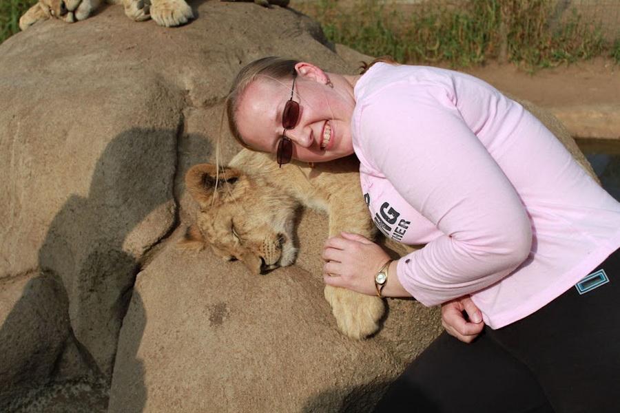 14116 Прогулка со львами