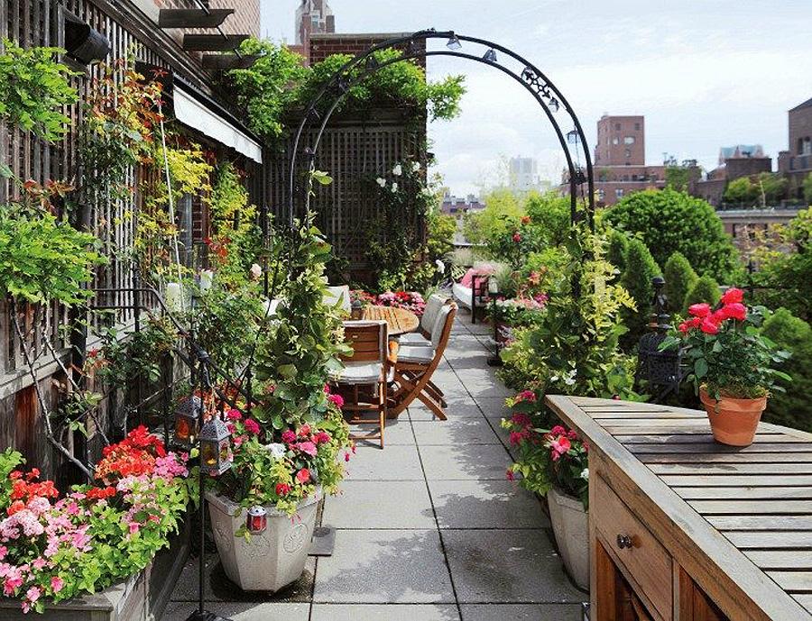 1646 Сады на крышах (Часть 2)