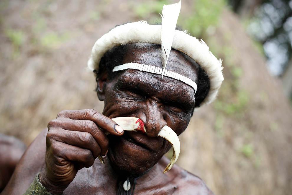 1663 Племя Дани из Западной Папуа