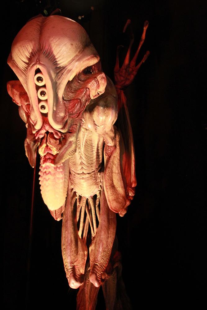 1758 Бал монстров   Выставка Monsterpalooza