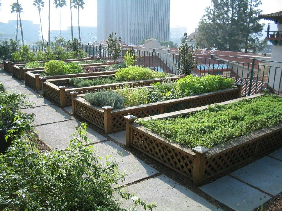 2038 Сады на крышах (Часть 2)