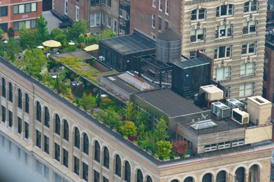 2173 Сады на крышах (Часть 2)