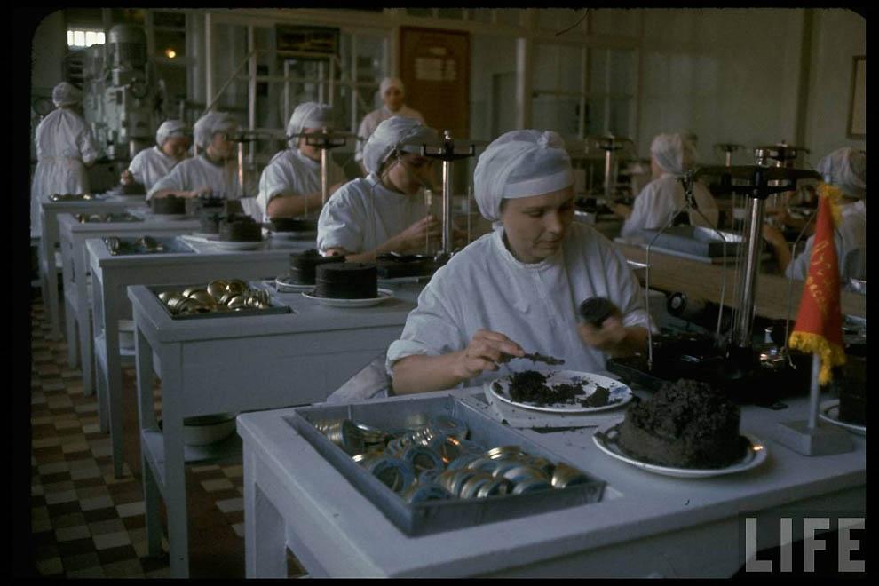 2515 Добыча черной икры в СССР 60 х