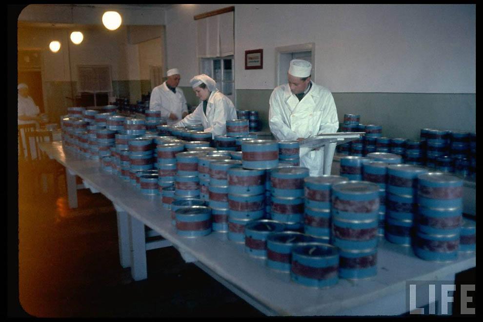 2611 Добыча черной икры в СССР 60 х