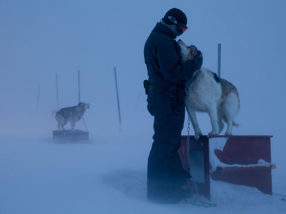 272 Обои для рабочего стола от National Geographic за март 2012