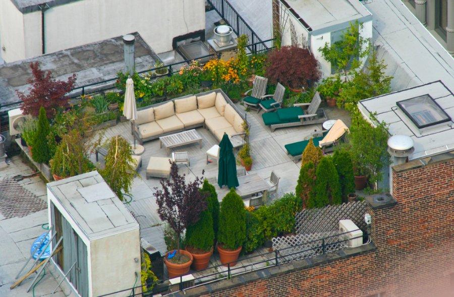 3136 Сады на крышах (Часть 2)