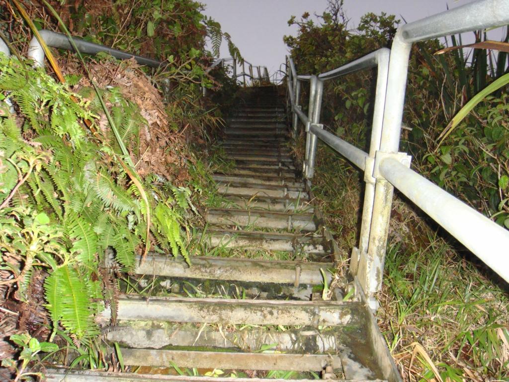 3195 Лестница Хайку на Гаваях