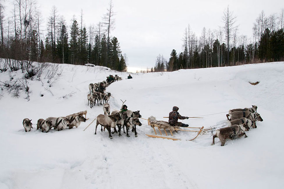 3261 Фотопутешествие на Ямал: линия Севера