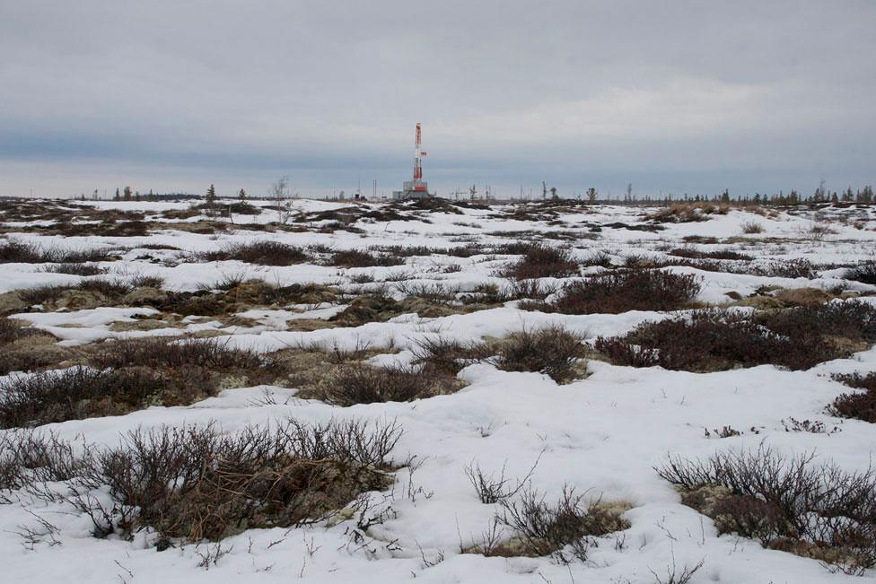 3524 Фотопутешествие на Ямал: линия Севера